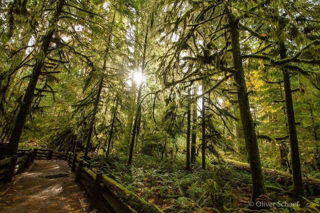Canada, Vancouver Island